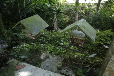 Buro-Buro Farm (22)