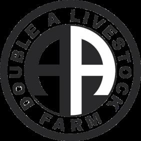 double-a-logo