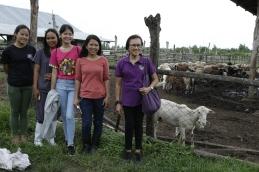 Faith Farms (398)