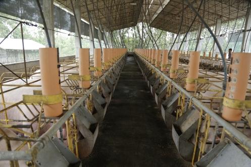 Faith Farms (422)