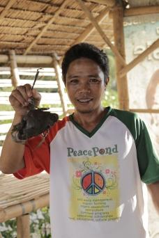 PeacePond (432)