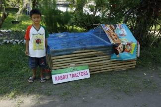 PeacePond (461)